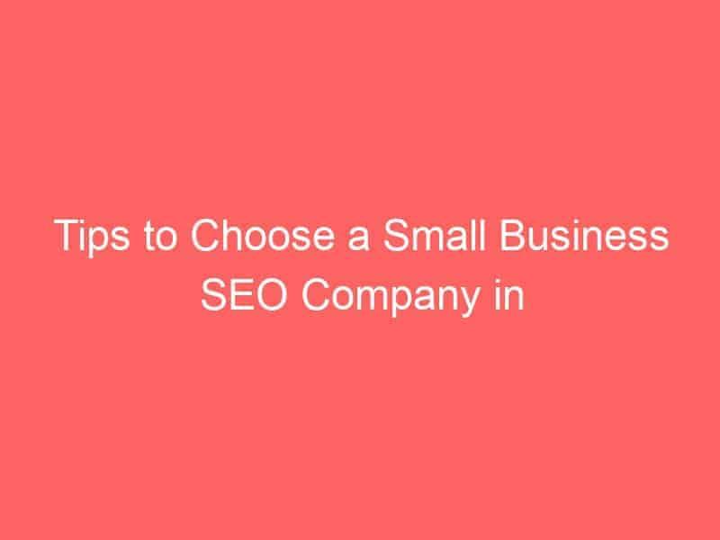 tips to choose a small business seo company in houston 3073 seo sri lanka